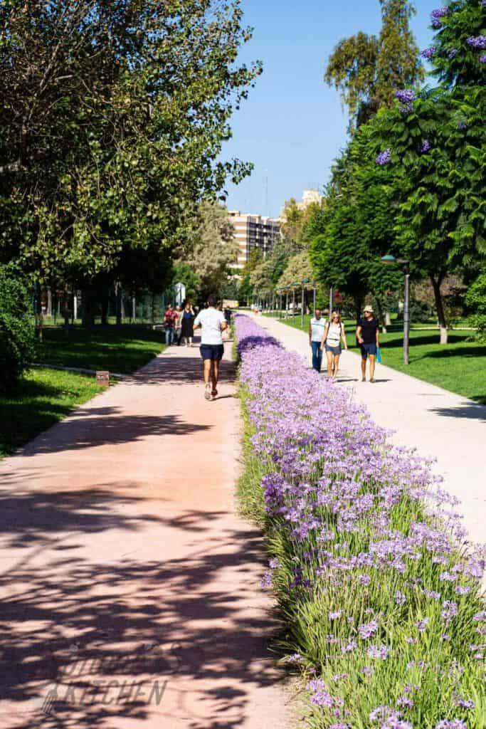 Stadspark Turia
