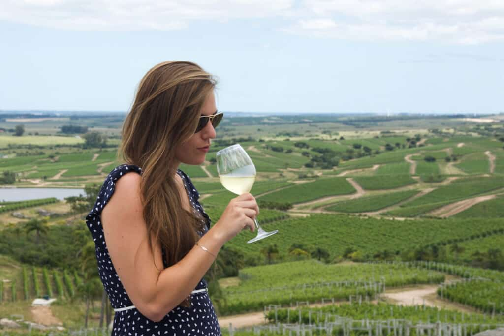 Uruguayaanse wijnboer - wijn proeven