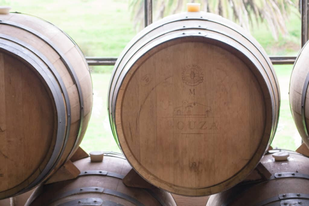 Bouza Bodega Uruguay - Uruguayaanse wijnboer